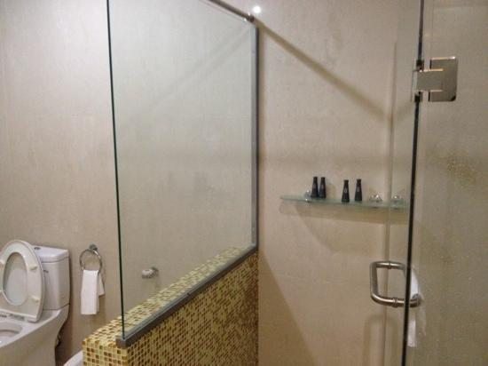 Lagos Oriental Hotel: shower