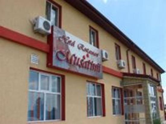Musatinii Hotel Buzau: Exterior View