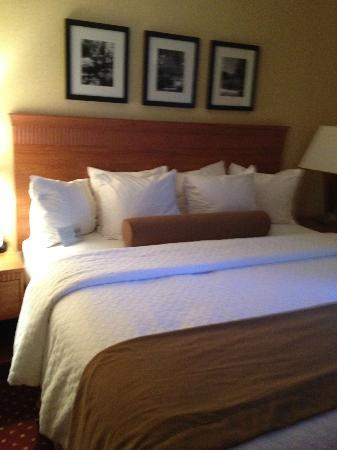 Embassy Suites by Hilton Williamsburg: Bed