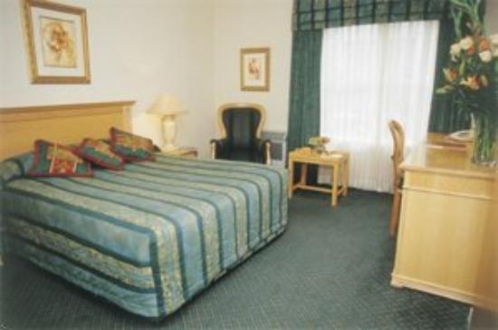 The Airport Grand : Guest Room