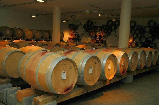 Roccafiore Winery: The wine cellar 