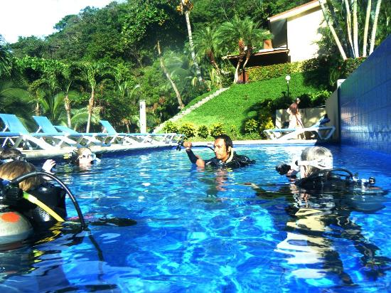 Bahia Pez Vela Resort: Area de Piscina