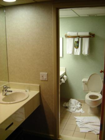 Banff Park Lodge Resort and Conference Centre : Clean bathroom with two sinks