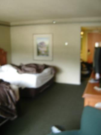 Banff Park Lodge Resort and Conference Centre : HUGE room