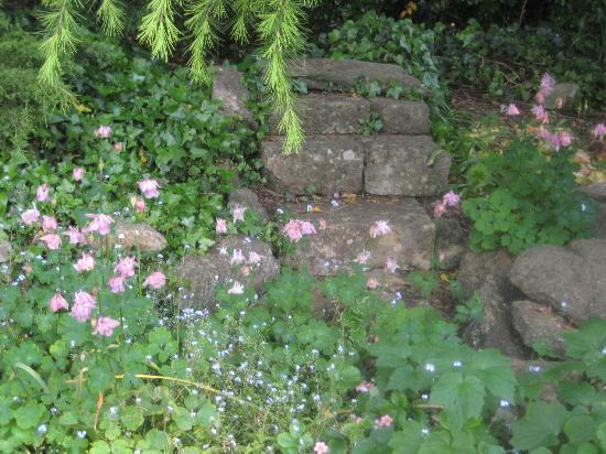 Parkside: Inge's garden
