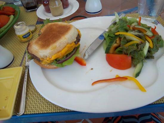Mediterraneo: The $22.00 US Dollar cheeseburger (No joke)