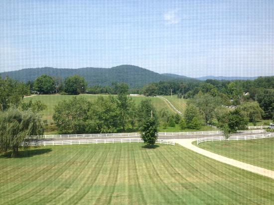Middleton Inn: View from the Ascot Room