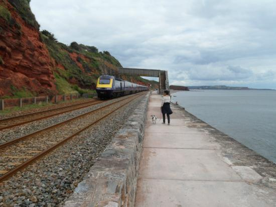 South West Coast Path National Trail: let the train take the strain