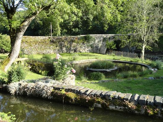 Le Moulin : Le jardin