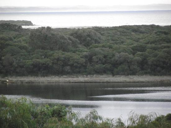 Seine Bay Apartments: View of the Estuary and Flinders Bay from upstairs - Winter 2012