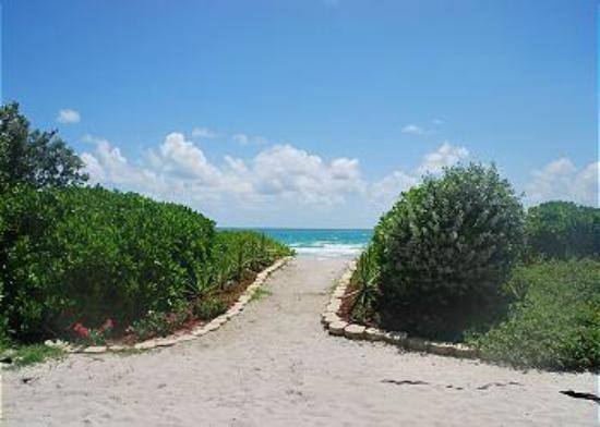 Design Suites Miami Beach: PATHWAY TO THE OCEAN FROM HOTEL