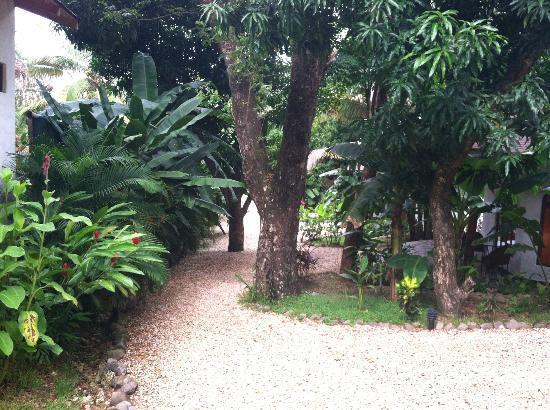 Hotel Manalá: path to beach