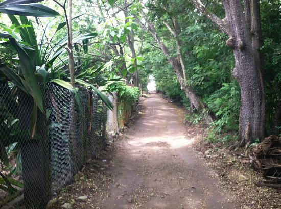 Hotel Manalá: path to beach