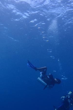 Sipadan Water Village: The divemaster from SWV perfoming tricks underwater!