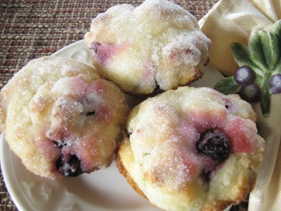 Sutherland Blueberry Bed & Breakfast: delicious home made muffins