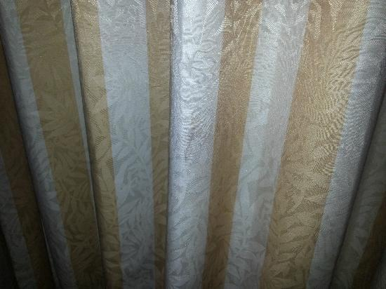 Crowne Plaza Houston - Brookhollow: Room 200 - Mystery stain on curtain