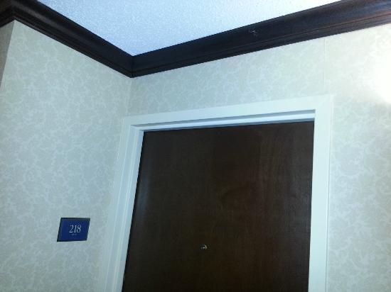 Crowne Plaza Houston - Brookhollow: If you look closely, you can see the giant spider hanging outside room 218. Look along the mold