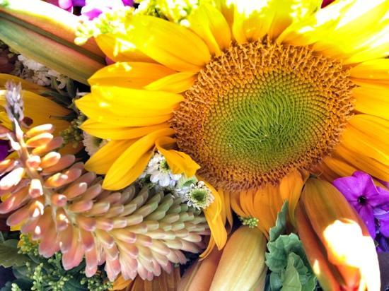 Boulder County Farmers Market: amazing floral!