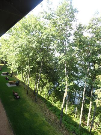 The Pointe Hotel & Suites : View off balcony (trying to capture walking trail)
