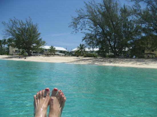 Harbour Heights: Perfect sandy beach and turquoise water