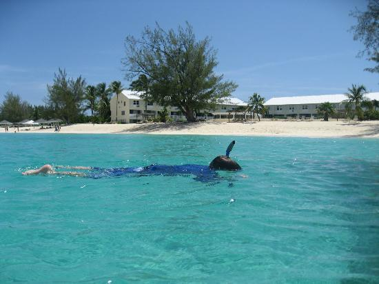 Snorkling right in front of Harbour Heights