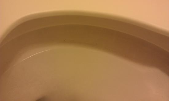 Red Roof Inn Ontario Airport: Mold in the toilet