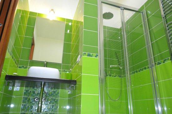 Porta Nuova: bagno stanza verde