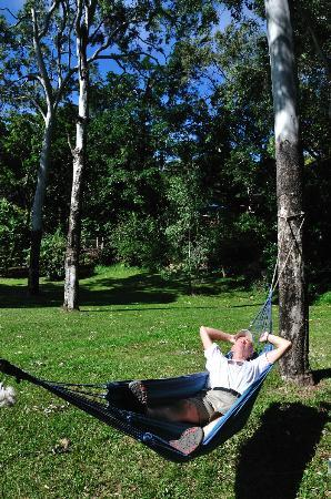 Bloomfield Lodge: Lazing on the hammock (below the pool deck)