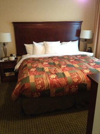 Homewood Suites Tampa Airport - Westshore: Suite Bedroom