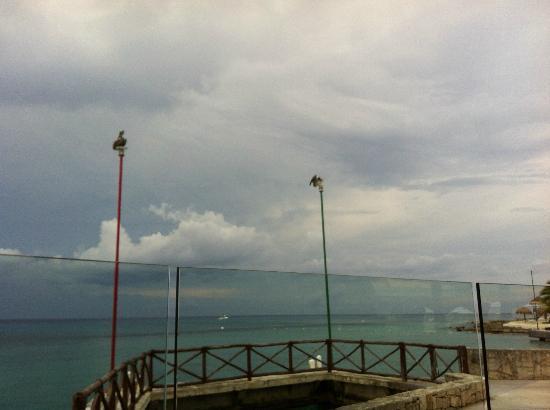 El Caribeno: Dock