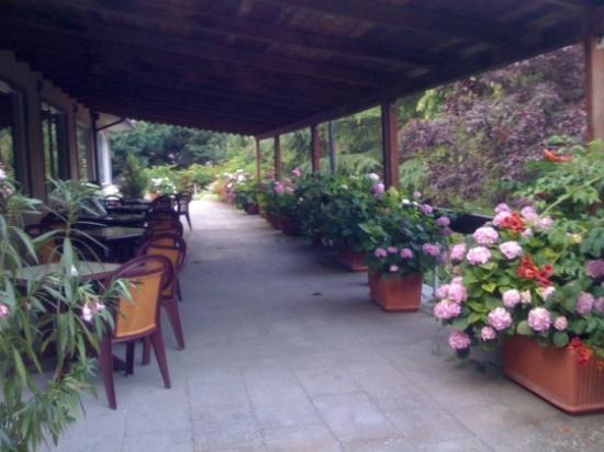 Hotel Parco Erosa: Giardino