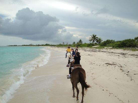 Punta Venado Eco Aventura Horseback Riding On The Beach