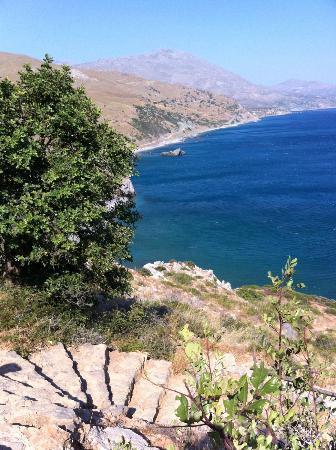 Agapi Beach Hotel: excellente vacance, Crete 06/2012