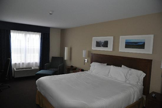 Holiday Inn Express Deer Lake: King room