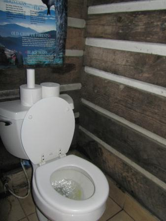 LeConte Lodge: Flush toilets!