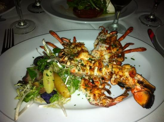 Ocean Prime: Lobster special for dinner.