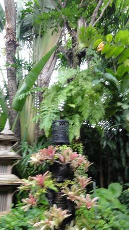 Babylon Bangkok: Green green garden