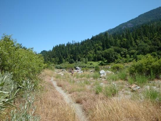 Sandy Bar Ranch: trail to the beach from the cabins