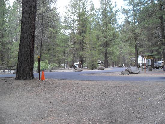Collier Memorial State Park: Tent Spaces Available Too 