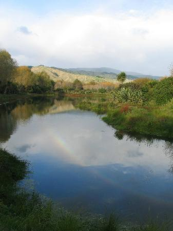 Chrystall's Bend hidden lagoon, at the end of the short walk up the Otaki River