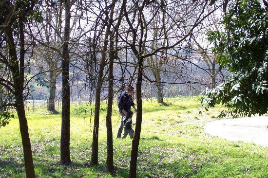 Villa Osperellone: The beautiful grounds
