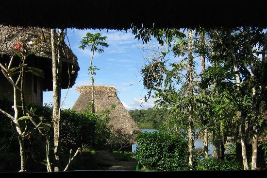 Napo Wildlife Center Ecolodge: View from our cabana patio