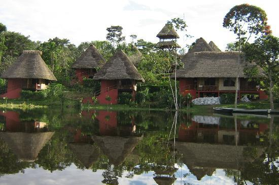 Napo Wildlife Centre: View of cabanas from the canoe