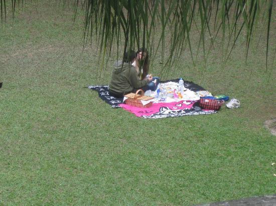 Parque Lage: Pessoas fazendo piquenique