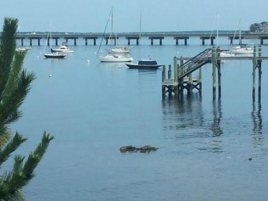 Sanford-Covell Villa Marina : This is the view outside the Dolphin room