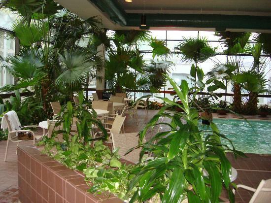 DoubleTree by Hilton Wichita Airport: piscina