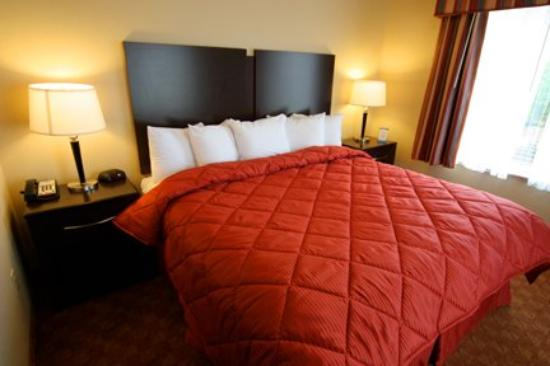 Comfort Inn & Suites: King bed Suite