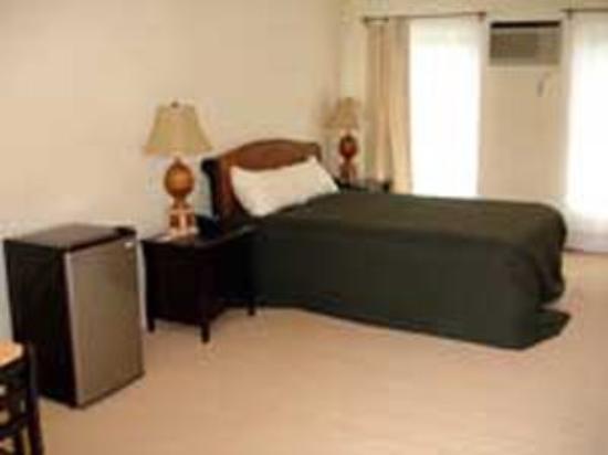 Arbor Inn Motel: Guest room