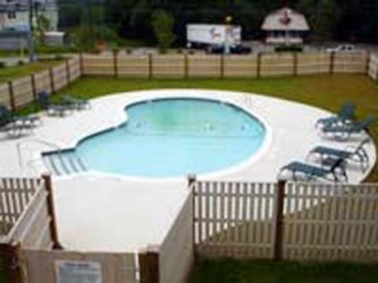 Arbor Inn Motel: Pool view