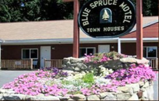 Photo of Blue Spruce Motel Plymouth